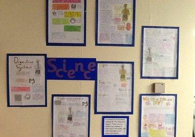 Year 6- Digests!