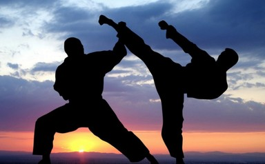 Extended Schools: Karate